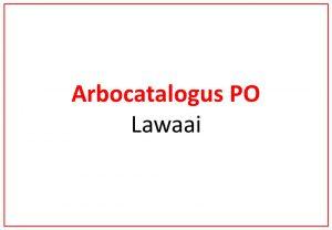 Arbo PO - Lawaai